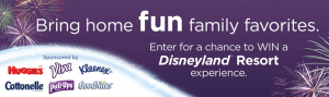 FunFamilyFavoritesSweeps.com - Fun Family Favorites Sweepstakes 2016