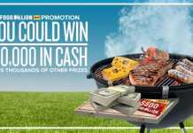 Food Lion Summer Sizzle Instant Win Game 2017 (FoodLion.com/SummerSizzle)