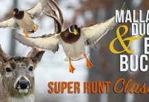 Super Hunt Giveaway 2017