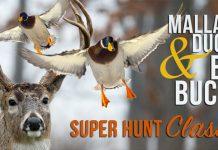 Super Hunt Giveaway 2017
