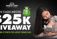 Win Cash Meow Giveaway