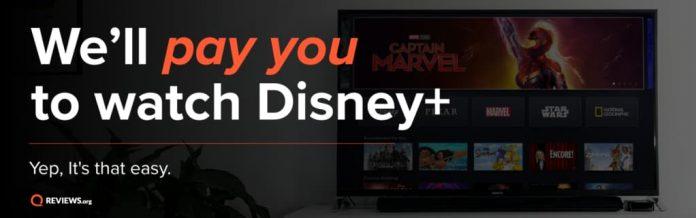 Disney Plus Dream Job Contest 2020